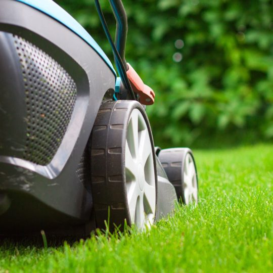 5 Tips for Mowing Your Lawn