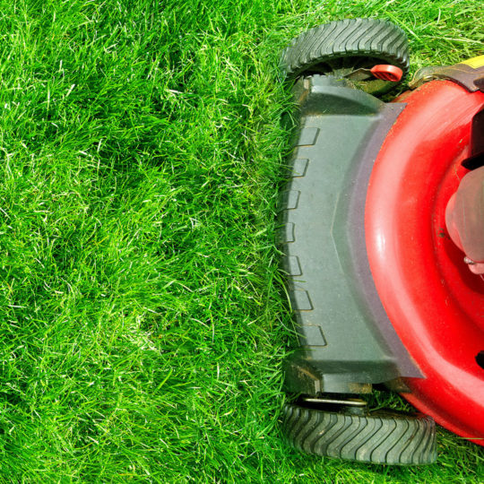 What's the Right Mowing Height for Your Lawn?