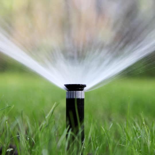 How Much Water Your Lawn Needs